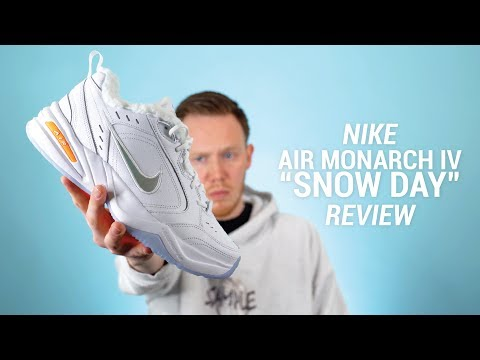 The $120 Nike Air Monarch IV