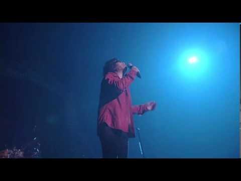 「木蘭の涙~acoustic~」スターダスト☆レビュー【LIVE】