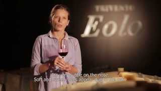TRIVENTO EOLO MALBEC 2012 (English)