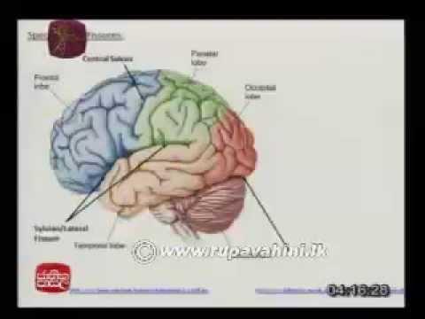 Biology (ජීව විද්යාව) - Lesson 09 | Jathika Pasala | Advanced Level (A/L)  [2013]