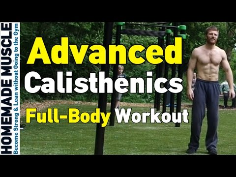 Advanced Calisthenics Workout (Rotterdam)