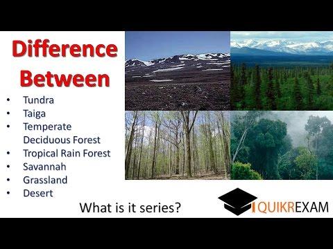 Difference between tundra taiga temperate  tropical rain forest Savannah grassland desert