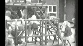 Nieuwleusen 1966 deel 1