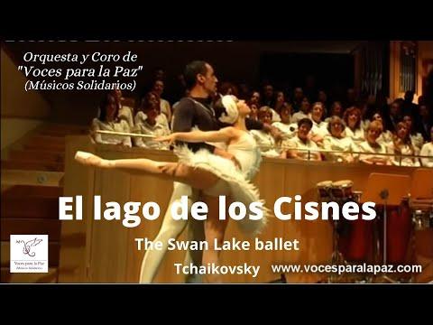 Download El lago de los Cisnes. The Swan Lake ballet. Tchaikovsky