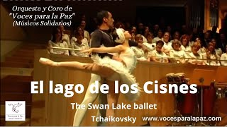 El lago de los Cisnes. Tchaikovsky - Stafaband