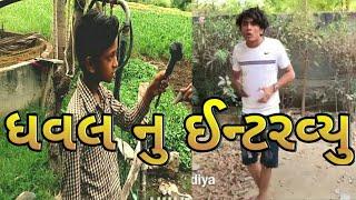 ધવલ ગાંડા નુ ઈંન્ટરવ્યુ ધવલ દોમડીયા દેદરડા || dhaval domadiya by comedy gujju