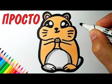 Как раскрасить хомяка