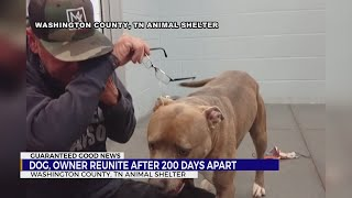 Owner reunites with dog at Washington Co., TN Animal Shelter after 200 days apart