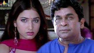 Tamanna's Sree Movie Comedy Scenes Back to Back | Brahmanadam, Sunil, Manoj | Sri Balaji Video