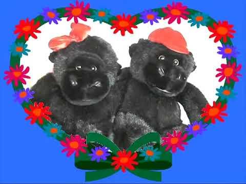 Valentine Monkeys Sing Love song