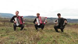 Crazy Accordion Trio - Scent of a Woman [FROM MOVIE]
