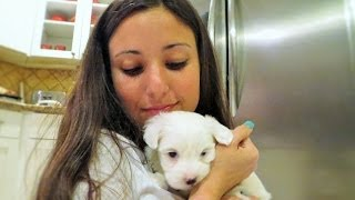 Angie Varona- New family member
