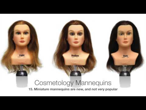 Part 3 of 3 - All About Cosmetology Mannequin Heads