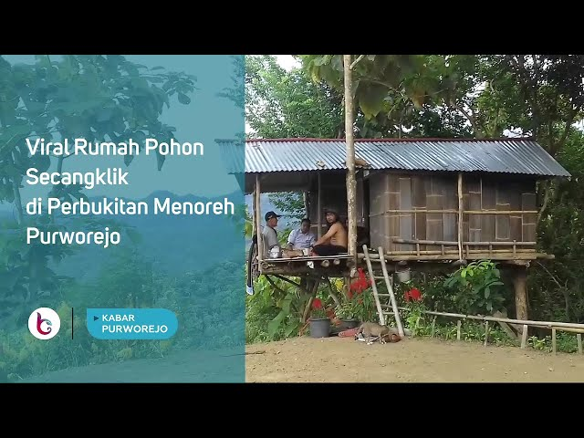 Viral Rumah Pohon Secangklik di Perbukitan Menoreh Purworejo