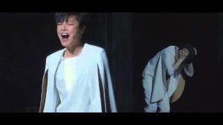 2013 《賈寶玉》AWAKENING 亞洲巡演  宣傳片