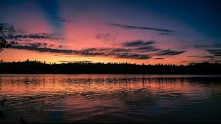 Swallow The Sun - Firelights (Lyrics)