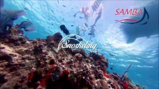 Catamaran a Isla Mujeres | Snorkel