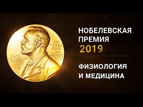 Нобелевская премия 2019 по физиологии и медицине. Лауреаты