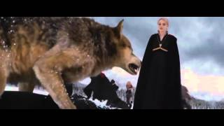 twilight saga breaking dawn part 2 final battle music video
