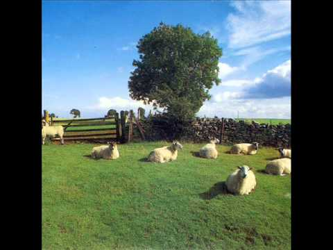 The KLF - Dream Time in Lake Jackson