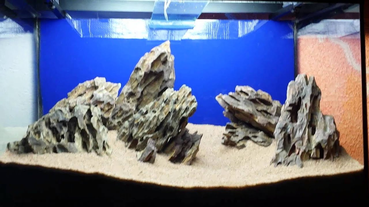 Hardscape Dragon Stones 60 X 30 X 40 Youtube