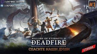 Pillars of Eternity II: Deadfire - спасите наши души.