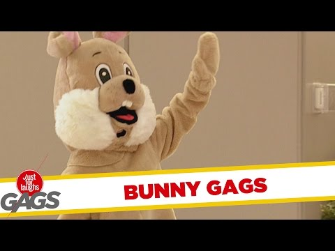 Easter Bunny Pranks - Best of Just For Laughs Gags