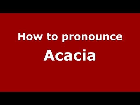 How To Ounce Acacia Spanish Argentina