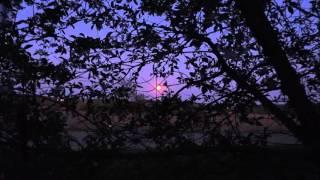 Вечер. Полная Луна. Картинка Природы(Снял полнолуние. На улице весна. Вечер. Хотя всё видно, так как полная луна хорошо освещает местность. Провер..., 2016-05-07T11:58:49.000Z)