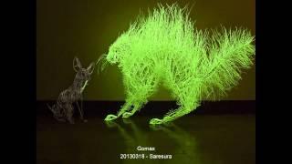 Gomax - 20130318 - Saresura