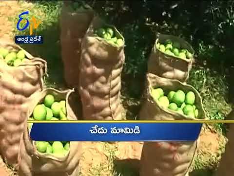 Andhra Pradesh 18th October 2017 Ghantaravam 11 AM News Headlines