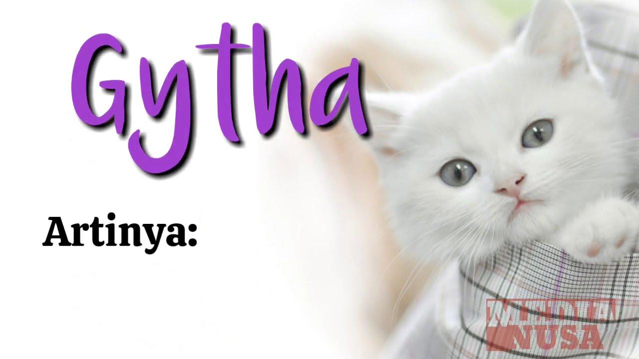 Ide Nama Kucing Yang Bagus Untuk Kittens Perempuan Betina Cantik Lucu Imut Terbaru Huruf Depan G Youtube