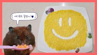 초간단 햄스터간식, 에그푸드 만들기