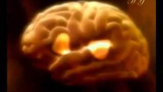 İnsan beyninin olağanüstü kapasitesine bakın!