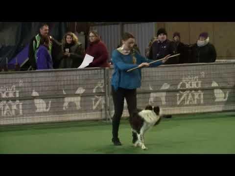 1er Concours Dog Dancing Lya