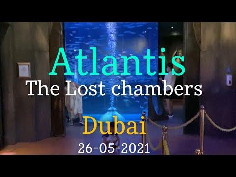 Atlantis   Lost Chambers   Dubai  Aquaventure  Shark   Manta's   26-05-2021