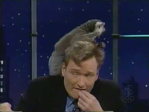 Late Night Jim Fowler and Amazing Wildlife 3/24/2000