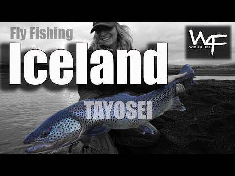 """W4F - Fly Fishing Iceland """"TAYŌSEI"""" Adventure with Fish Partner, Marc Crapo and Meredith McCord"""
