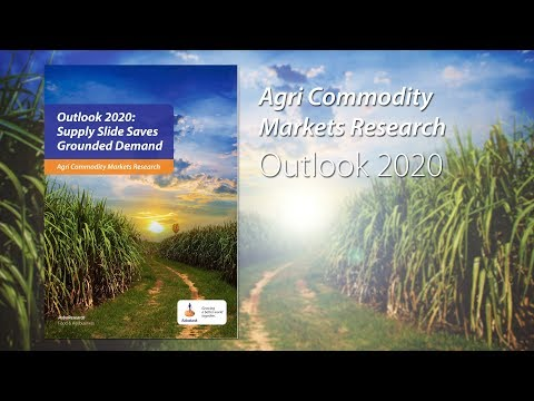 Agri Commodities Outlook 2020: Supply Slide Saves Grounded Demand