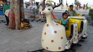 Deer Train Rides- Top Supplier & Manufacturer