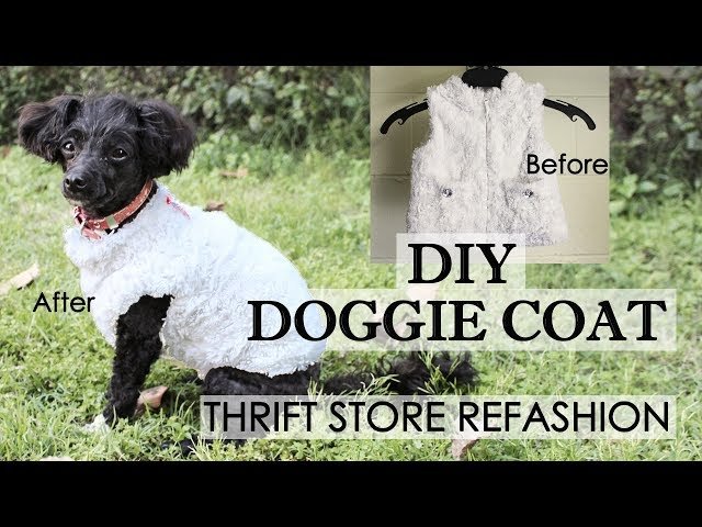 f68a76d8a DIY Dog Clothes And Coats You Should Make