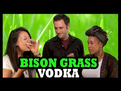 Why Would You Drink.... Bison Grass Vodka!? - Food Feeder