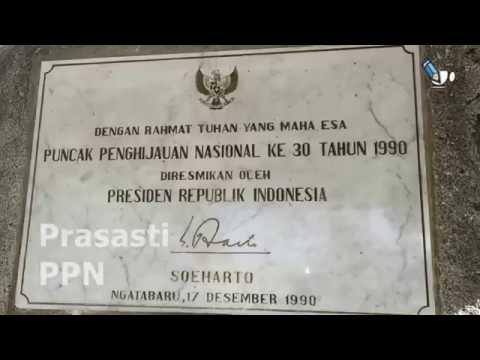 tahura-sulteng:-jejak-presiden-soeharto-di-#kapopo-ngatabaru