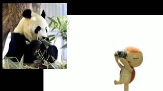 ザッキ~おにいさんが夏休み中の子どもたちに贈るプレゼント動画 【モジ...