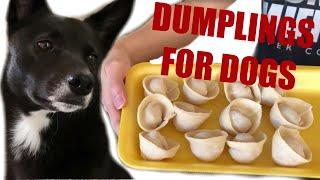 The BEST Dumplings For Dogs | Homemade Chinese Dumpling Recipe DIY DOG TREATS