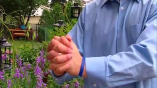 Mitosis Hand Jive Bill Ry The Science Guy