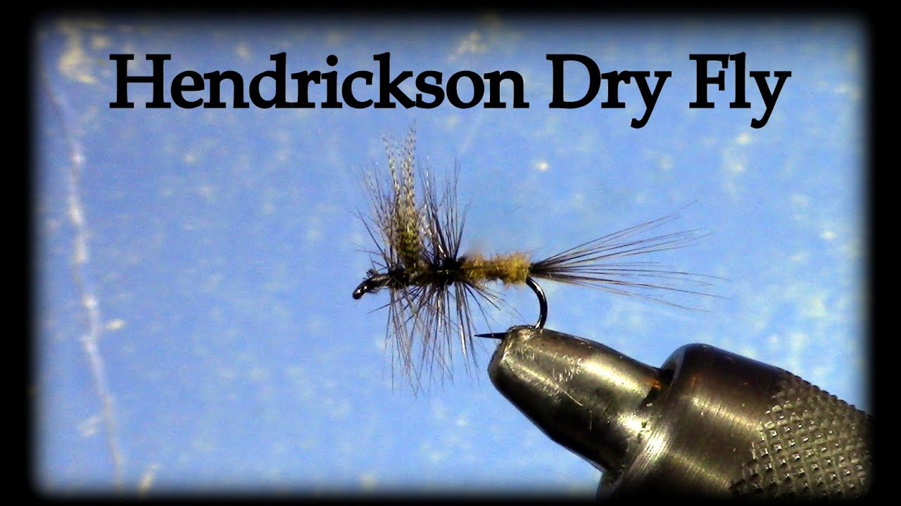 Hendrickson Fly Pattern Best Design Inspiration