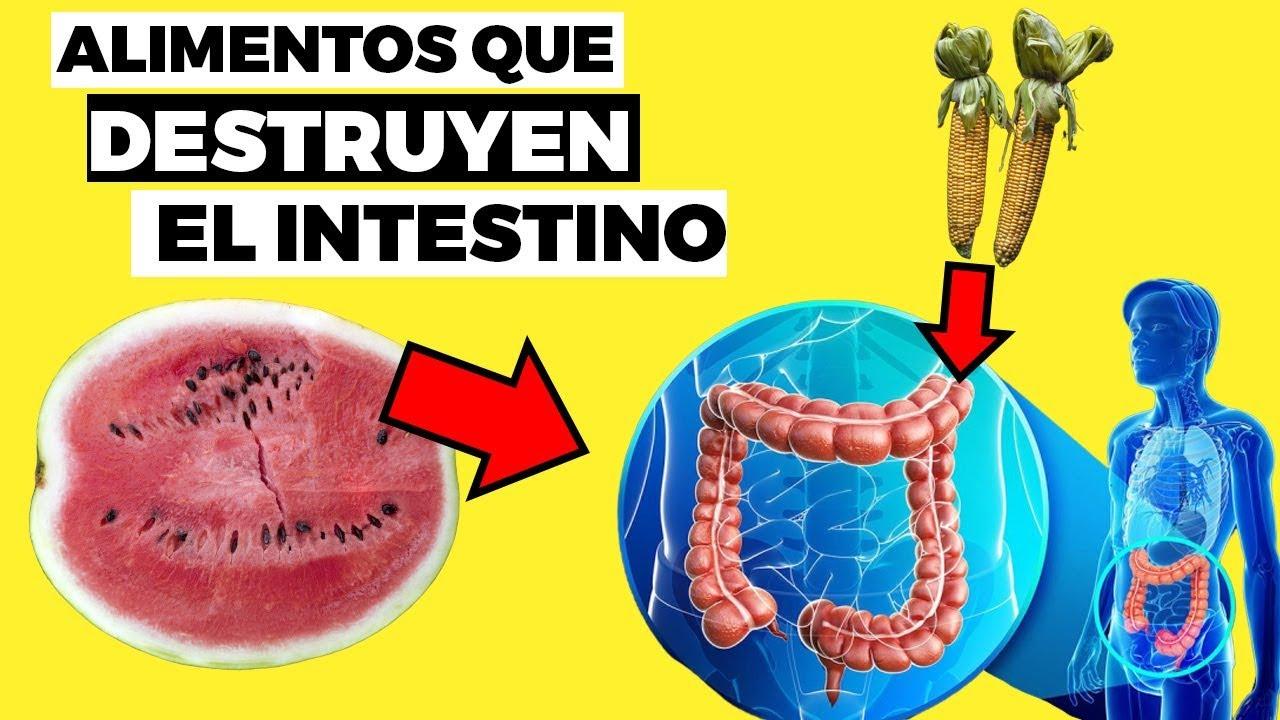 8 alimentos que DESTRUYEN TU INTESTINO y flora intestinal, y que es bueno para el intestino