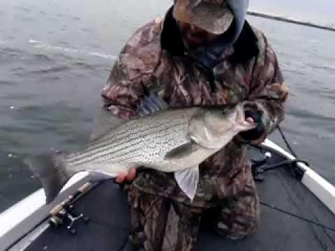 Heidecke lake fishing guides youtube for Heidecke lake fishing report