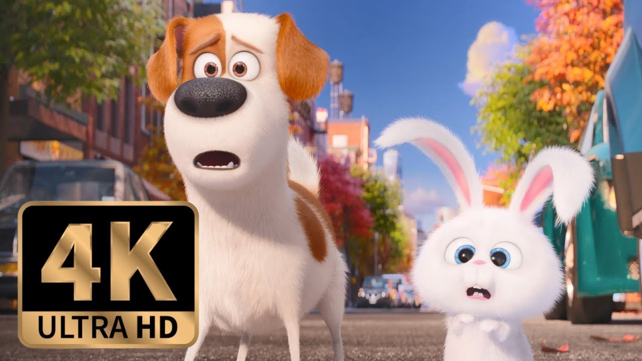 Download The Secret Life of Pets (2016) - Max and Snowball Join Forces (8/10)